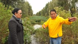 Sederec realiza recorrido por invernaderos de Xochimilco afectados